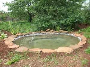 Как сделать в саду декоративный водоем
