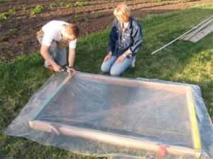 Как построить недорогую теплицу