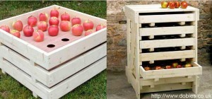 хранения плодов