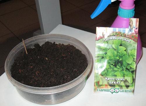 травы на кухне