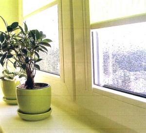 поставить окно пвх