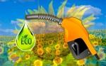 энергия биомассы