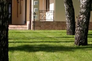 Вертикальные конструкции в саду