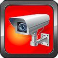 Организация IP-видеонаблюдения