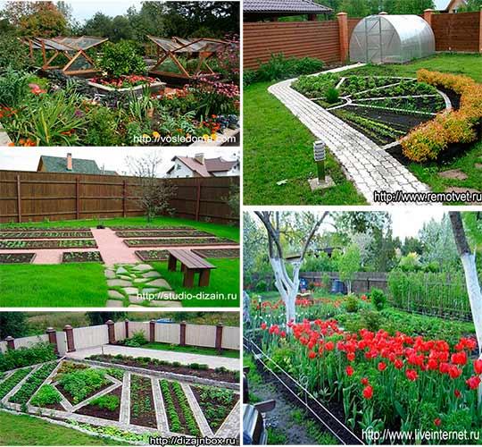 дизайн садово-огородного участка