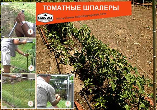 шпалеры для томатов