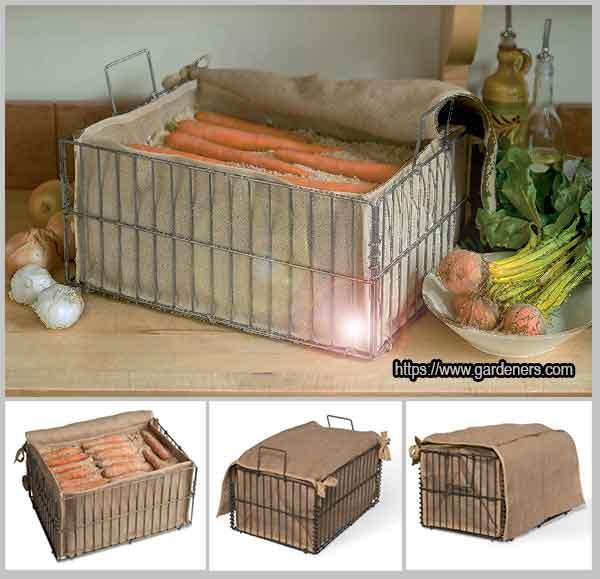 контейнер для хранения корнеплодов