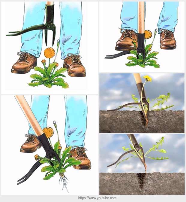 инструменты для удаления сорняков
