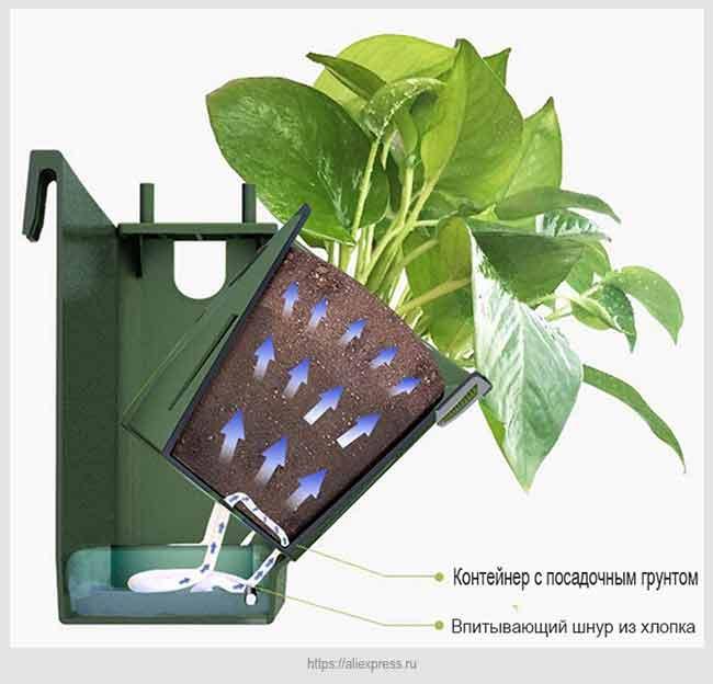 гидропонное питание растений