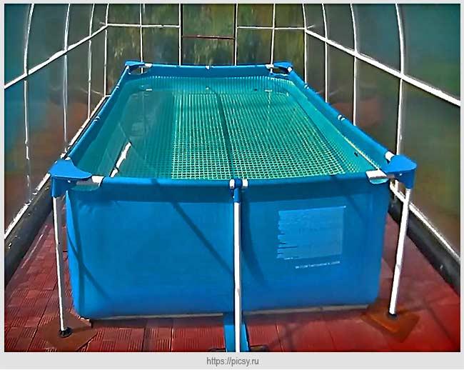 бассейн в теплице